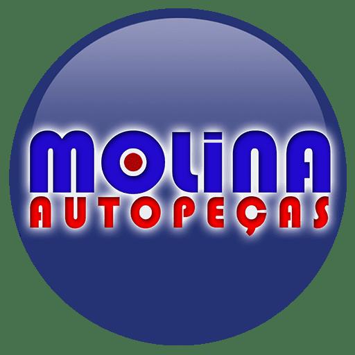 Auto peças e acessórios para carros