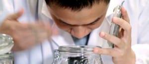 Montadora realiza testes para desenvolver o odor mais adequado para cada região do mundo. (Foto divulgação)